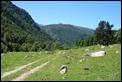 IMG_0994_Pyrenees