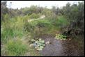IMG_1748_Pinail_Trail