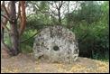 IMG_1806_Pinail_Trail