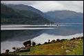 J01_0129 Loch Sunart