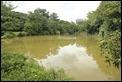_MG_4347 KRP Large Pond