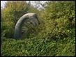 2014-09-18 09.44.51 Canal wildlife