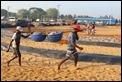 J18_2777 Fish market, Negombo