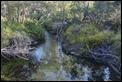 J19_2183 Seary's Creek